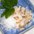 ツブ貝の刺身